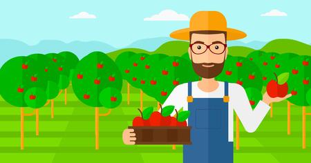 arboles frutales: Un hombre inconformista de la barba sosteniendo una caja con las manzanas en una mano y una manzana en la otra sobre un fondo de jard�n con �rboles vector Ilustraci�n dise�o plano. disposici�n horizontal. Vectores