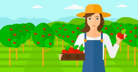 albero da frutto: Una donna con una scatola con le mele in una mano e una mela in un altro su uno sfondo di giardino con alberi vettore piatta design illustrazione. layout orizzontale. Vettoriali