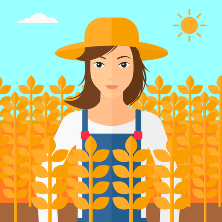 A woman standing in a wheat field vector flat design illustration. Square layout.