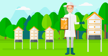 apiculture: A woman wearing protective suit holding a framework in hand and showing thumb up on the background of apiary vector flat design illustration. Horizontal layout.