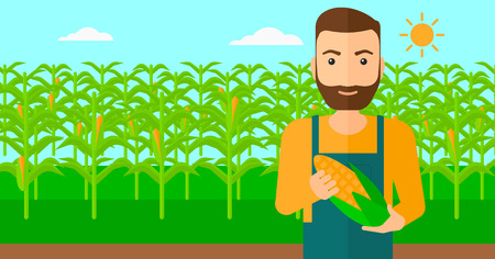 corn on the cob: A hipster man with the beard holding a corn cob on the background of field vector flat design illustration. Horizontal layout.