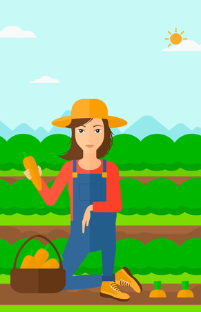 A woman collecting carrots in basket on the background of field rows with green bushes vector flat design illustration. Vertical layout. Illustration