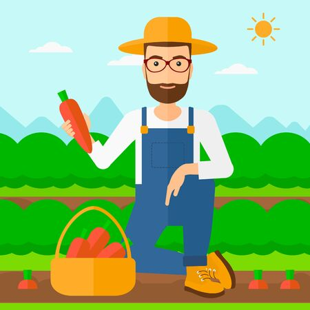 collecting: A hipster man with the beard collecting carrots in basket on the background of field rows with green bushes vector flat design illustration. Square layout. Illustration