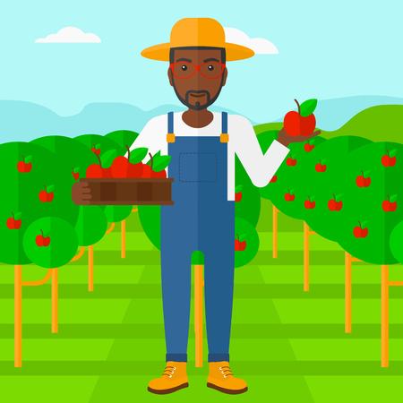 arboles frutales: Un hombre afroamericano que sostiene una caja de manzanas en una mano y una manzana en la otra sobre un fondo de jard�n con �rboles vector Ilustraci�n dise�o plano. de planta cuadrada.