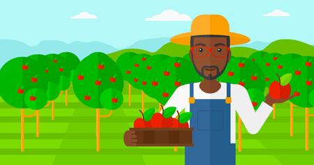 arboles frutales: Un hombre afroamericano que sostiene una caja de manzanas en una mano y una manzana en la otra sobre un fondo de jard�n con �rboles vector Ilustraci�n dise�o plano. disposici�n horizontal.
