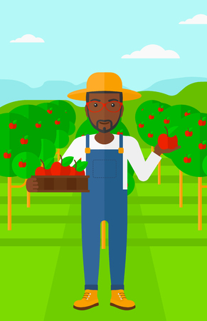 vertical garden: An african-american man holding a box with apples in one hand and an apple in another on a background of garden with trees vector flat design illustration. Vertical layout.