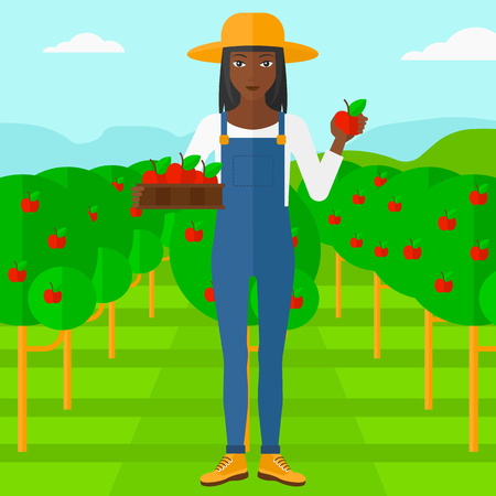 An african-american woman holding a box with apples in one hand and an apple in another on a background of garden with trees vector flat design illustration. Square layout. Illustration