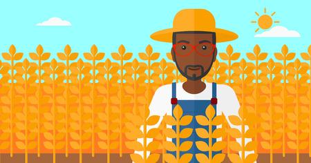 fertile: An african-american man standing in a wheat field vector flat design illustration. Horizontal layout.
