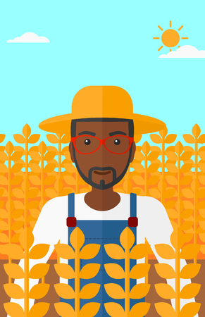 fertile: An african-american man standing in a wheat field vector flat design illustration. Vertical layout.