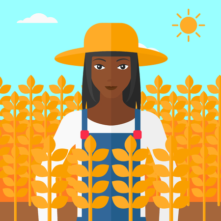 peasant woman: An african-american woman standing in a wheat field vector flat design illustration. Square layout.
