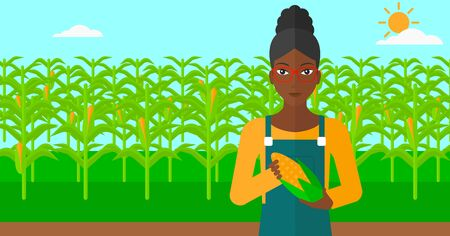 corn on the cob: An african-american woman with holding a corn cob on the background of field vector flat design illustration. Horizontal layout. Illustration