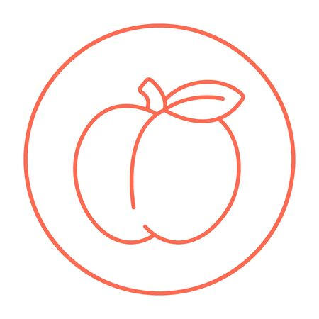 ripened: Apple line icon for web, mobile and infographics. Vector red thin line icon in the circle isolated on white background.