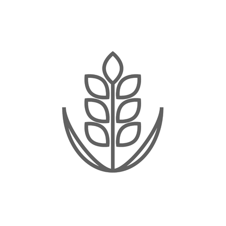 Wheat line icon for web, mobile and infographics. Vector dark grey icon isolated on white background.