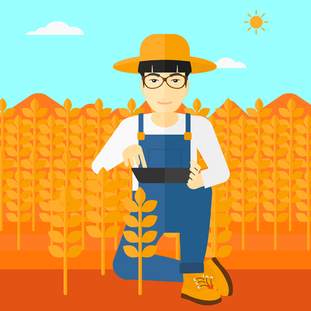 checking: An asian man checking plants on a field and working on a digital tablet vector flat design illustration. Square layout. Illustration