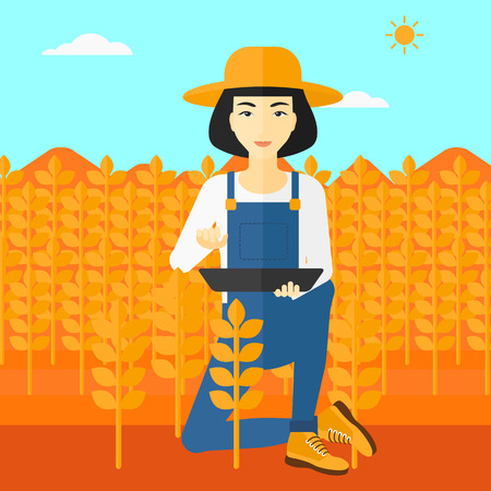 checking: An asian woman checking plants on a field and working on a digital tablet vector flat design illustration. Square layout.