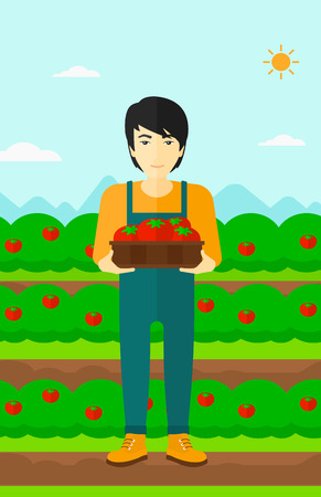 picker: An asian man holding a box with tomatoes on the background of field vector flat design illustration. Vertical layout. Illustration