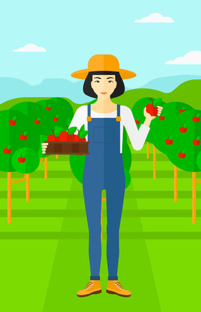 asian gardening: An asian woman holding a box with apples in one hand and an apple in another on a background of garden with trees vector flat design illustration. Vertical layout. Illustration