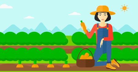 collecting: An asian woman collecting carrots in basket on the background of field rows with green bushes vector flat design illustration. Horizontal layout. Illustration