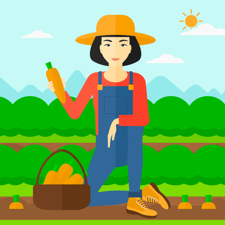 collecting: An asian  woman collecting carrots in basket on the background of field rows with green bushes vector flat design illustration. Square layout.