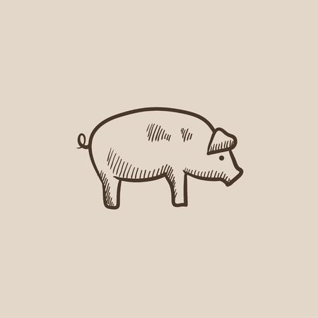 豚は、web、モバイルのアイコンとインフォ グラフィックをスケッチします。手には、ベクトル分離アイコンが描画されます。  イラスト・ベクター素材