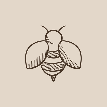Bee sketch icon for web, mobile and infographics. Hand drawn vector isolated icon.