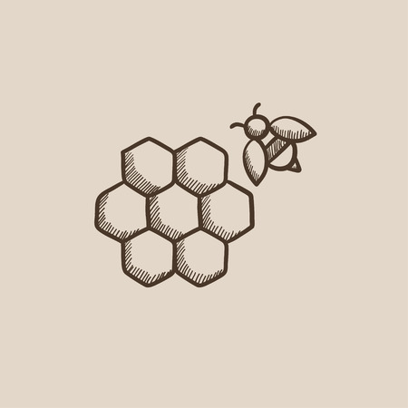 Honeycomb and a bee sketch icon for web, mobile and infographics. Hand drawn vector isolated icon.