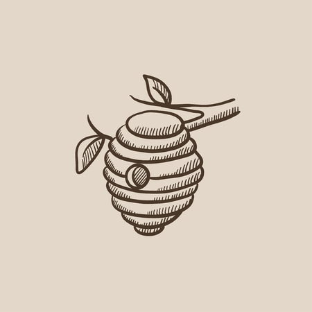 hive: Bee hive sketch icon for web, mobile and infographics. Hand drawn vector isolated icon.