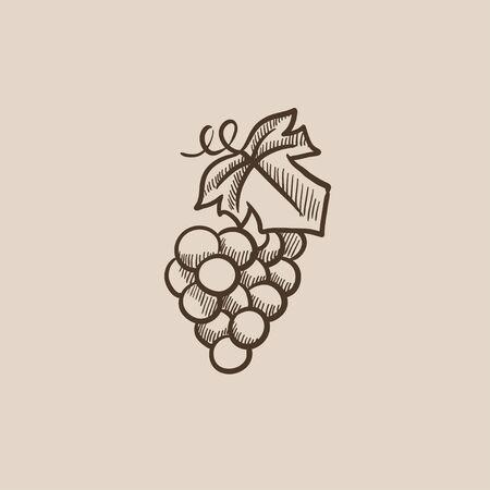 웹, 모바일 및 인포 그래픽을위한 포도 스케치 아이콘입니다. 손으로 그린 벡터 아이콘입니다.