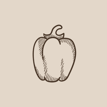 Bell pepper sketch icon for web, mobile and infographics. Hand drawn vector isolated icon.