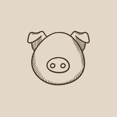 pigling: Pig head sketch icon for web, mobile and infographics. Hand drawn vector isolated icon. Illustration