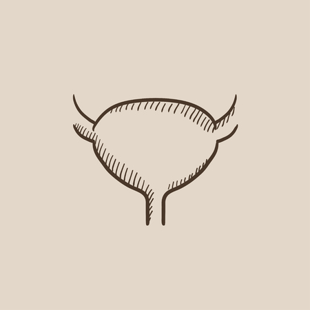 Urinary bladder sketch icon for web, mobile and infographics. Hand drawn vector isolated icon. Illustration