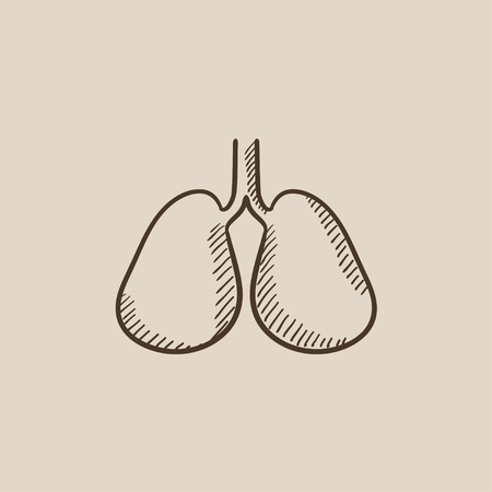 Lungs sketch icon for web, mobile and infographics. Hand drawn vector isolated icon.