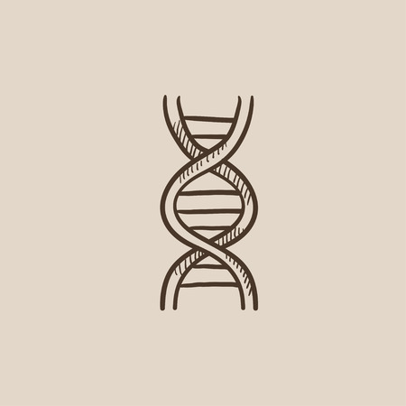genomes: DNA sketch icon for web, mobile and infographics. Hand drawn vector isolated icon. Illustration