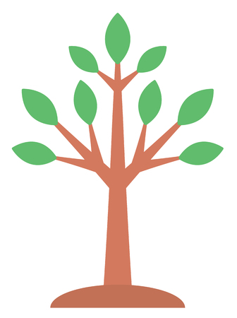 Large deciduous tree vector flat design illustration isolated on white background.