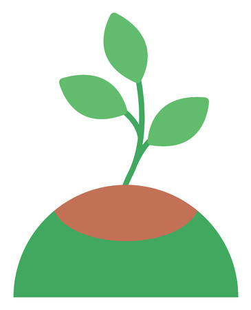 growing plant: Young green plant growing in soil vector flat design illustration isolated on white background. Illustration