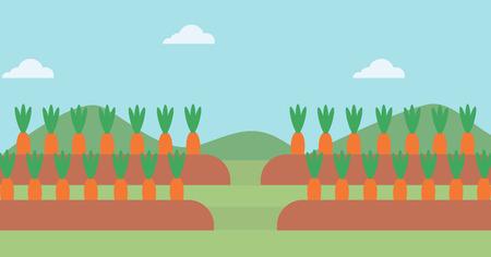 zanahoria caricatura: Antecedentes de zanahorias crecen en el campo de vector diseño plano. disposición horizontal.