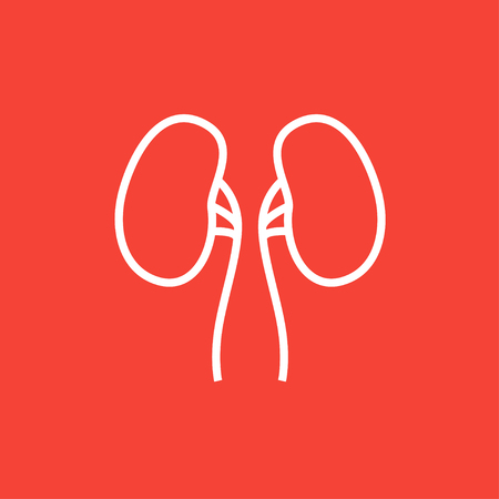 Kidney thick line icon with pointed corners and edges for web, mobile and infographics. Vector isolated icon.