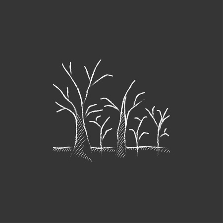 nude outdoors: Tree with bare branches. Hand drawn in chalk vector isolated icon for web, mobile and infographics.