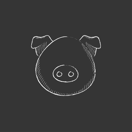 pigling: Pig head. Hand drawn in chalk vector isolated icon for web, mobile and infographics. Illustration