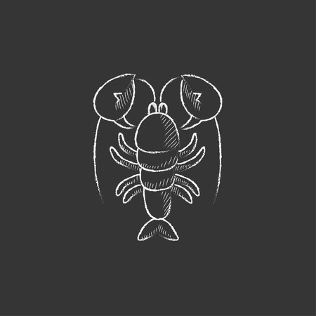 Lobster. Hand drawn in chalk vector isolated icon for web, mobile and infographics. Illusztráció