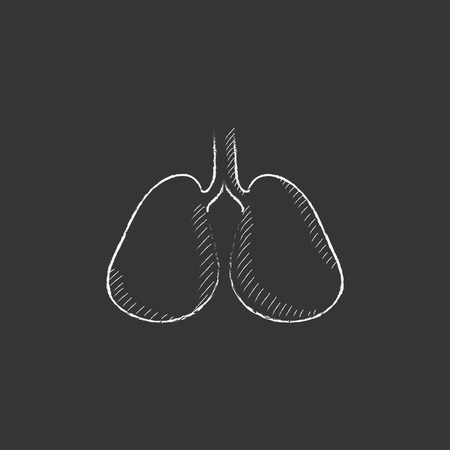 alveolus: Lungs. Hand drawn in chalk vector isolated icon for web, mobile and infographics.