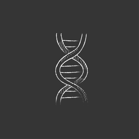 DNA. Hand drawn in chalk vector isolated icon for web, mobile and infographics.