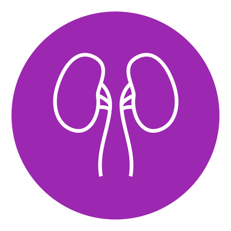 adrenal: Kidney thick line icon with pointed corners and edges for web, mobile and infographics. Vector isolated icon.