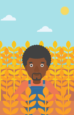 laborer: An african-american man standing in a wheat field vector flat design illustration. Vertical layout.