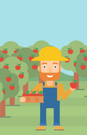 vertical garden: A hipster man with the beard holding a box with apples in one hand and an apple in another on a background of garden with trees vector flat design illustration. Vertical layout.