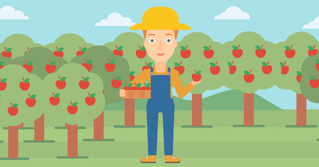 A woman holding a box with apples in one hand and an apple in another on a background of garden with trees vector flat design illustration. Horizontal layout.