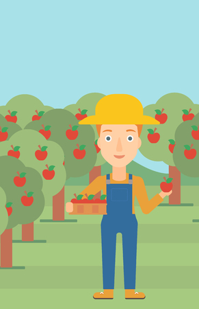 vertical garden: A woman holding a box with apples in one hand and an apple in another on a background of garden with trees vector flat design illustration. Vertical layout.