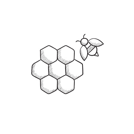 Honeycomb and bee sketch icon for web, mobile and infographics. Hand drawn honeycomb and bee icon. Honeycomb and bee vector icon. Honeycomb and bee icon isolated on white background. Illustration