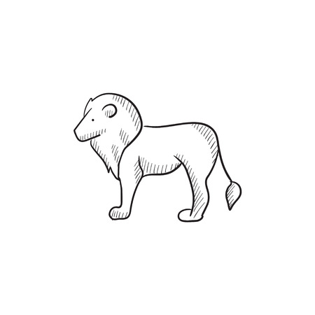 Lion vector sketch icon isolated on background. Hand drawn Lion icon. Lion sketch icon for infographic, website or app.  イラスト・ベクター素材