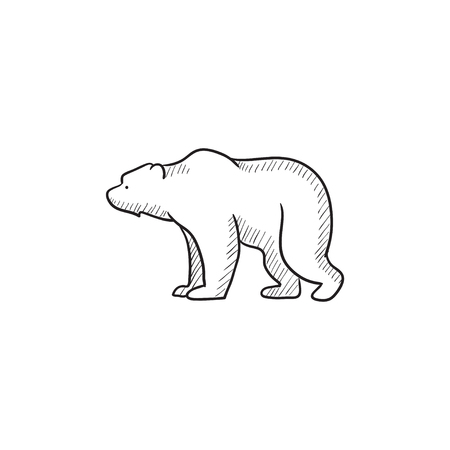 bruin: Bear vector sketch icon isolated on background. Hand drawn Bear icon. Bear sketch icon for infographic, website or app.